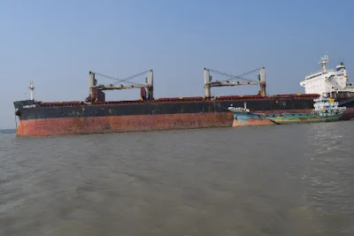 SANDPIPER Bulk Carrier
