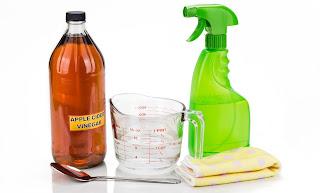 come usa l'aceto di mele per la pulizia della casa immagine