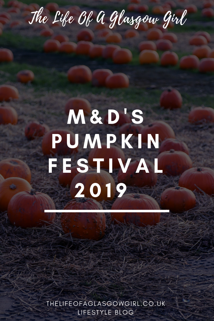 Pinterest graphic for M&D's pumpkin festival blog post on Thelifeofaglasgowgirl.co.uk - photo of orange pumpkins in a row on green grass with white writing over the image that says M&Ds pumpkin festival 2019