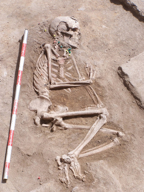 Largest prehistoric cemetery in Spain brought to light after a decade of excavations