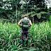 10 Wisata & Destinasi Terbaik di Sungai Amazon