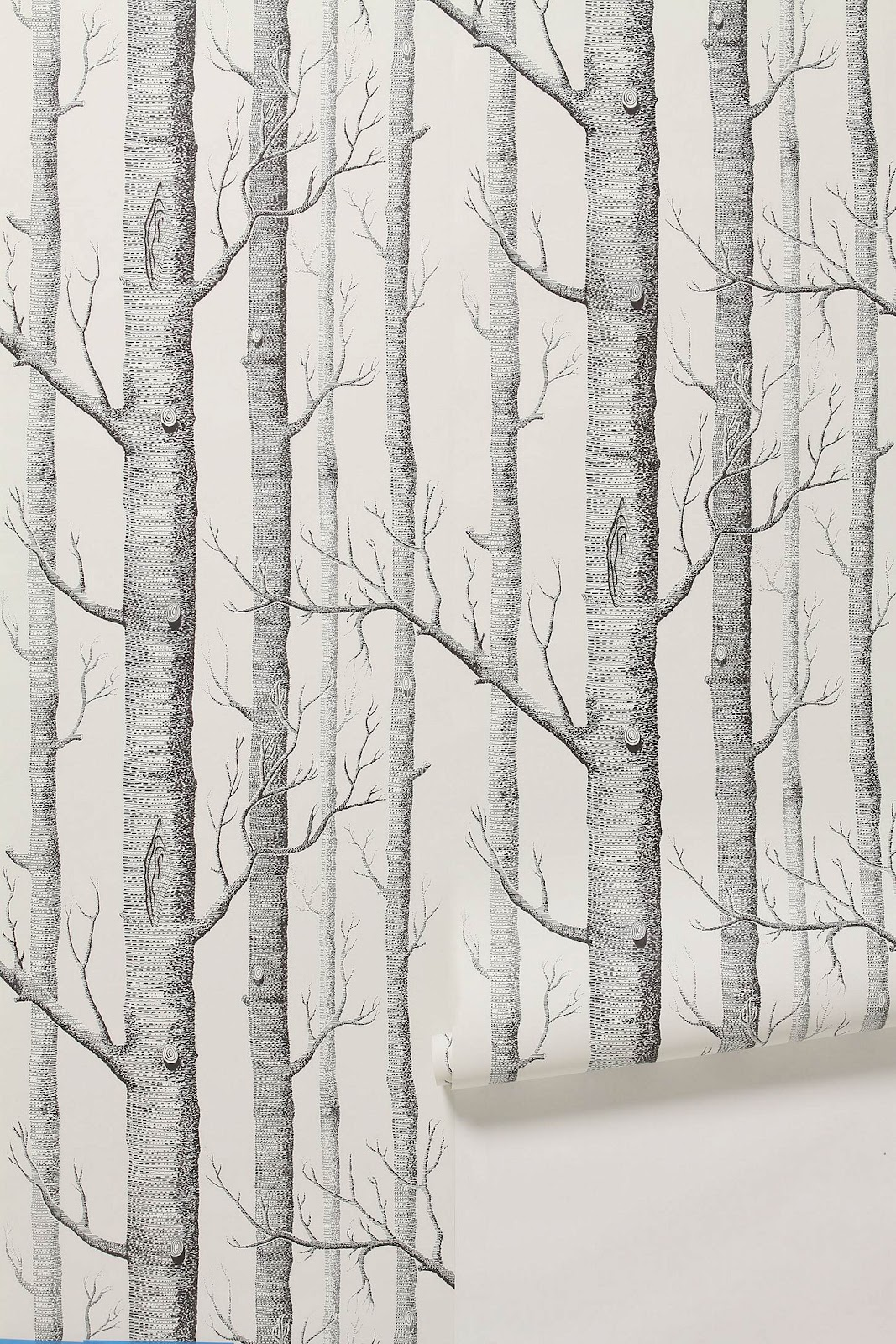 courtney lane: Patterned Wallpaper {De Gournay & Anthropologie}