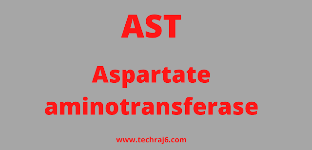 AST full form, What is the full form of AST