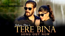 Tere Bina Lyrics- Salman Khan (Translation)