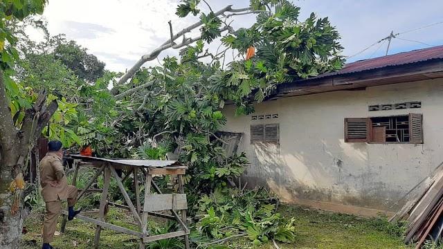 Hujan Dan Angin Kencang Rusakkan Rumah Nek Siti Hasanah ''Langsa''