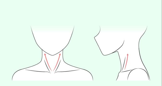 Menggambar otot leher anime