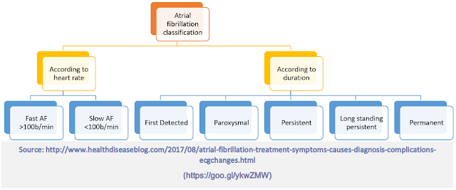 Classification of Atrial Fibrillation