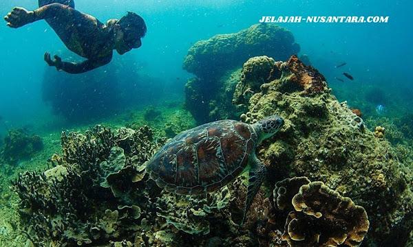 fasilitas private wisata pulau harapan 3 hari 2 malam kepulauan seribu