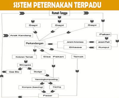 Sistem Peternakan Terpadu: Definisi, Prinsi, Peran dan Peta Konsep