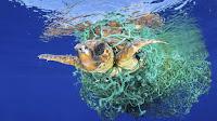 https://www.canarias7.es/sociedad/un-laboratorio-contra-el-plastico-en-el-mar-DX4770270