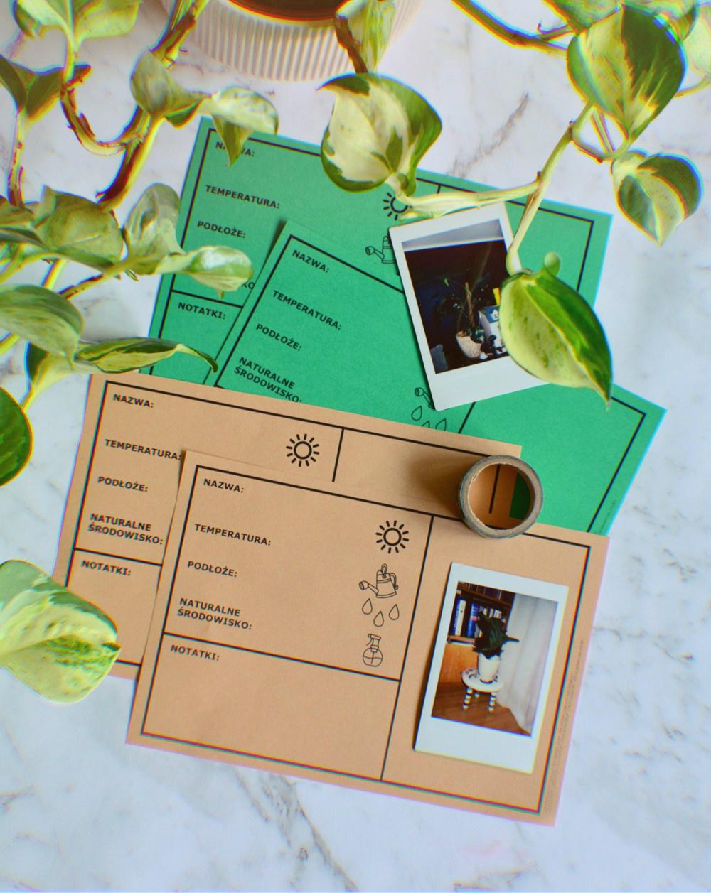 DO POBRANIA: KARTY ROŚLIN 🌱📝 - pielęgnacja, wymagania i potrzeby domowych roślin