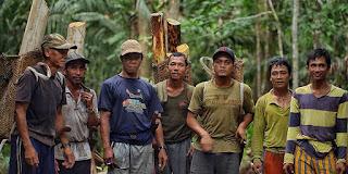 Di Tengah Pandemi Masyarakat Di Sekitar Hutan Masih Bisa Sejahtera
