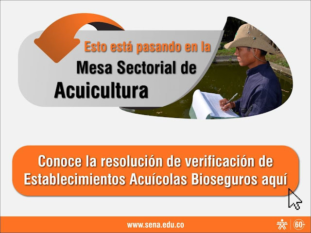 http://es.calameo.com/read/00425138645b3dabebee4