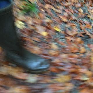 Gummistiefel auf Herbstlaub