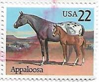 Selo Cavalo Appaloosa