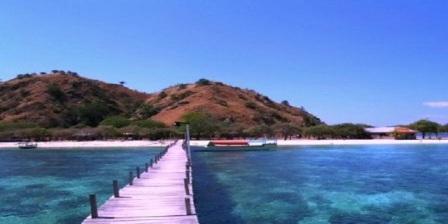Pulau Komodo di Nusa Tenggara Timur  tempat wisata di indonesia yang masih alami tempat wisata di indonesia dan kekayaan alamnya tempat wisata alam indonesia tempat wisata andalan indonesia