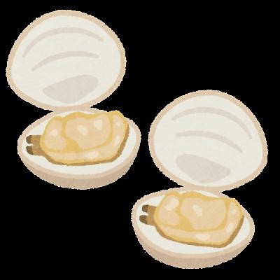 開いた貝のイラスト(はまぐり)