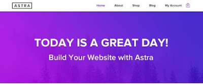 Astra Premium themes free download