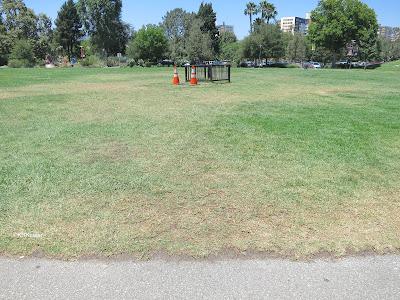park lawn by La Brea Tar Pits