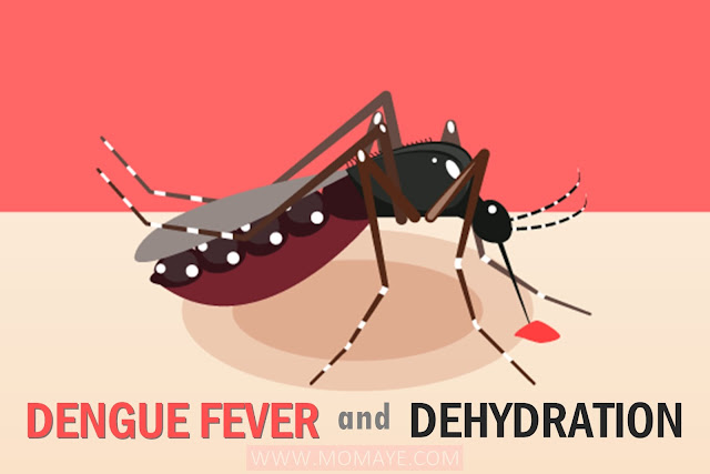 Dengue Fever, Dehydration, symptoms of Dengue fever, prevention of Dengue fever
