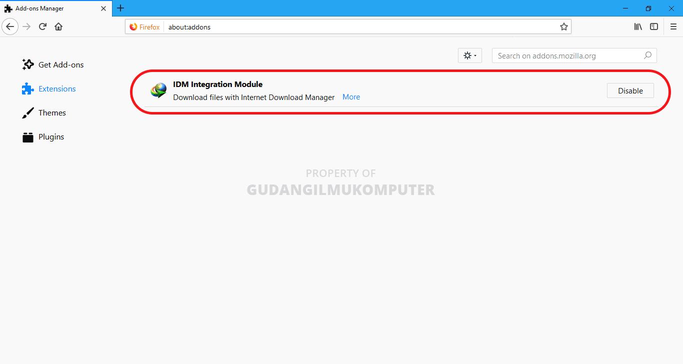 IDM Tidak Muncul di YouTube