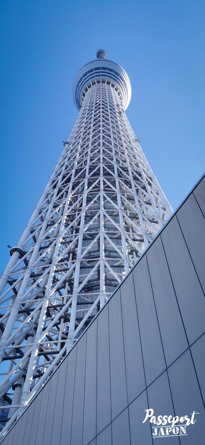 Tokyo skytree, vue en contreplongée, Tokyo, Japon