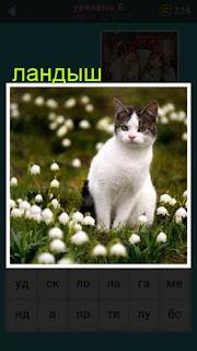 среди ландышей сидит обычная кошка 667 слов 8 уровень