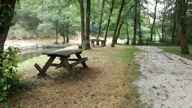 Mesas de merendas de madeira