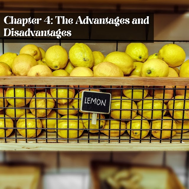 Definitive Guide to Becoming a Successful Drop shipper - Chapter 4: The Advantages and Disadvantages