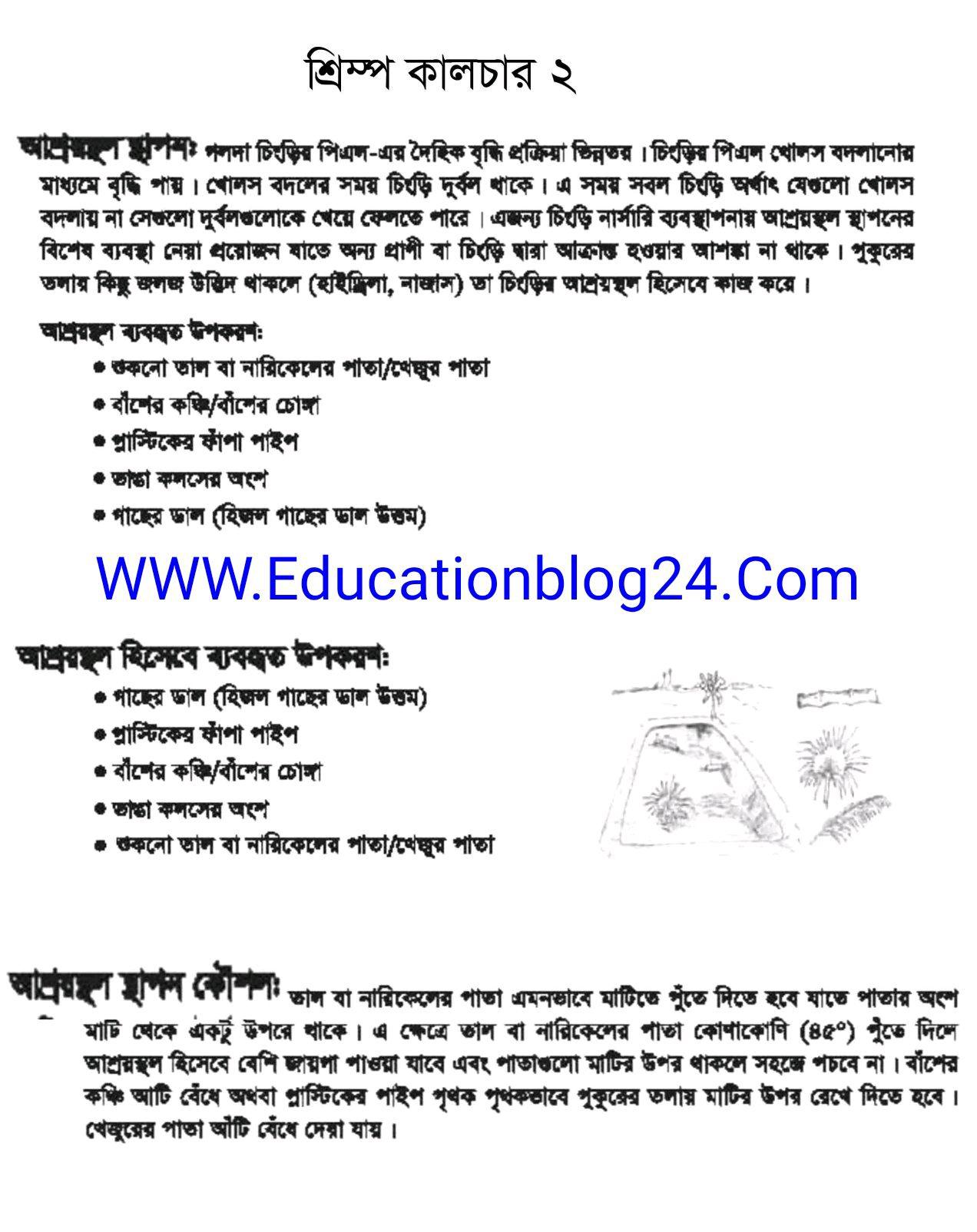 SSC / Dakhil (Vocational) Shrimp Culture and Breeding Assignment Answer 2021 12