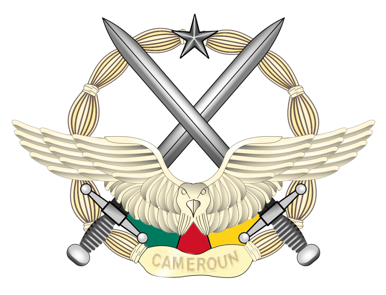 Career in Cameroon's Air Force