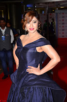 Payal Ghosh aka Harika in Dark Blue Deep Neck Sleeveless Gown at 64th Jio Filmfare Awards South 2017 ~  Exclusive 026.JPG