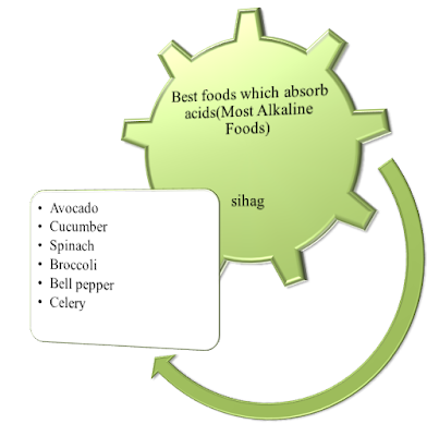 Best-foods-which-absorb-acids