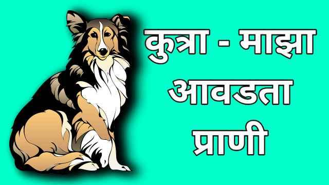 माझा आवडता प्राणी कुत्रा मराठी निबंध | My favourite animal dog.