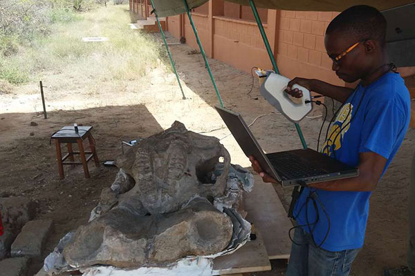 4 million year old Elephant fossil found in Kenya's Turkana