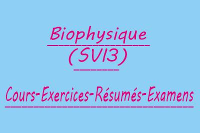 Biophysique SVI3 Cours // Td Et Exercices // Résumés // Examens