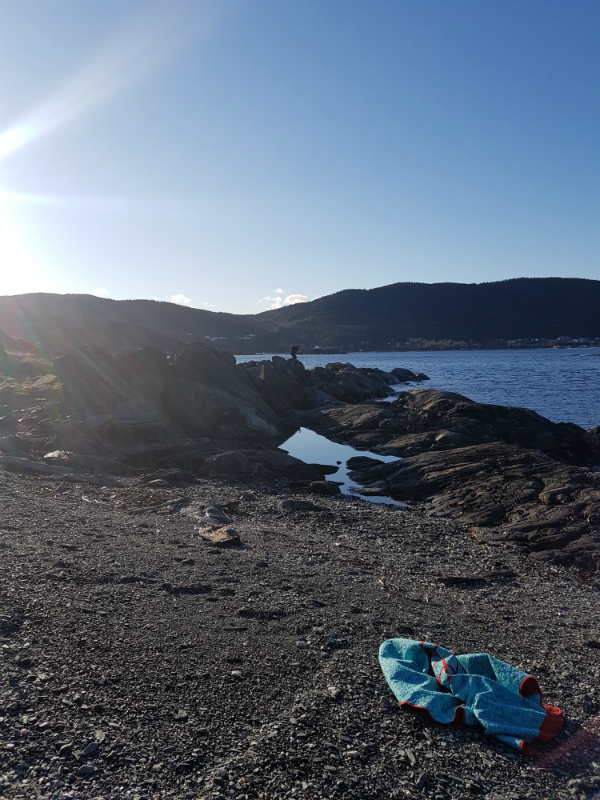 Coachman's Cove | DevotedQuilter.blogspot.com