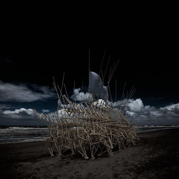 N. Salventius Photography Portfolio Ocean