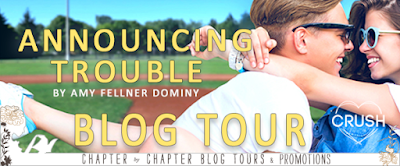 http://www.chapter-by-chapter.com/tour-schedule-announcing-trouble-by-amy-fellner-dominy