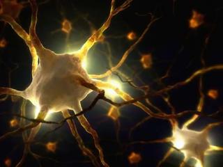 Биофотоните могат да бъдат засегнати от квантово заплитане