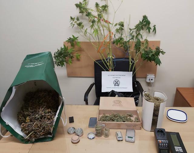 Σύλληψη για καλλιέργεια και κατοχή ναρκωτικών στην Κορινθία