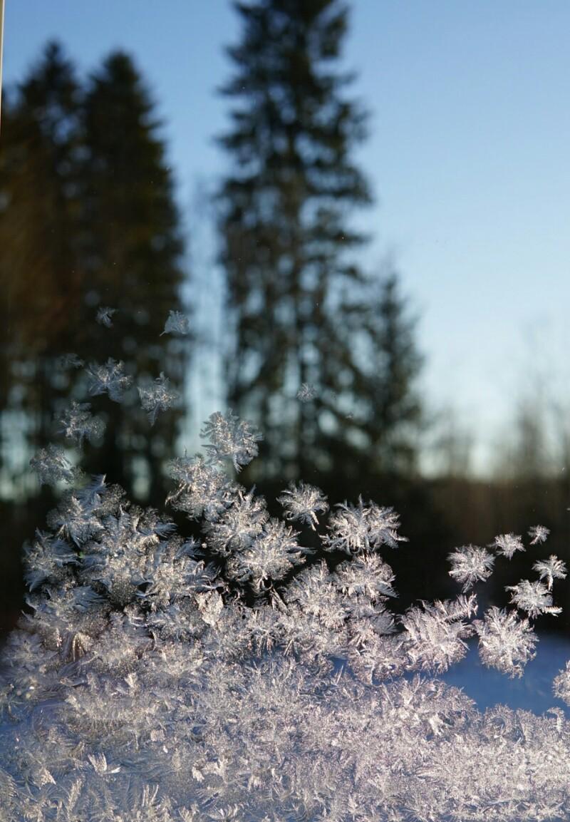 Ikkuna, talvipäivä, pakkanen