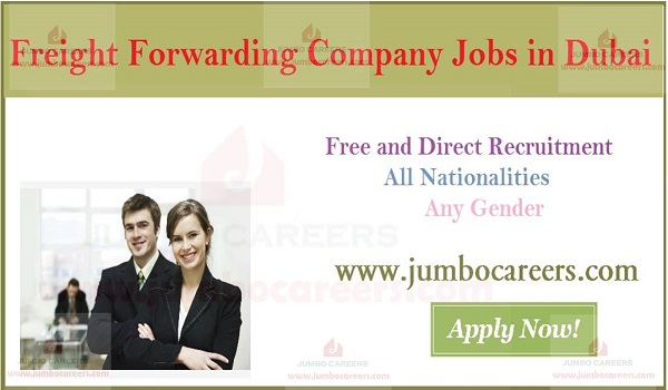 Freight Forwarding Company Jobs in Dubai