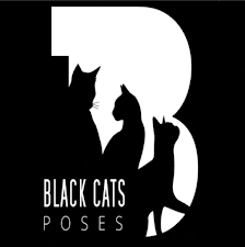 Black Cats Poses