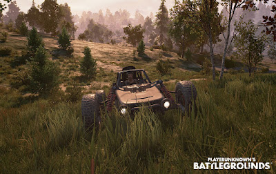PlayerUnknown's Battlegrounds Game Image 4