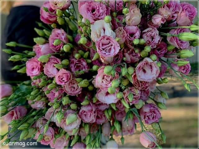 صور ورد - خلفيات ورد 8 | Flowers Photos - Roses wallpapers 8