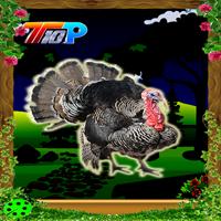 Top10NewGames Rescue The Turkey