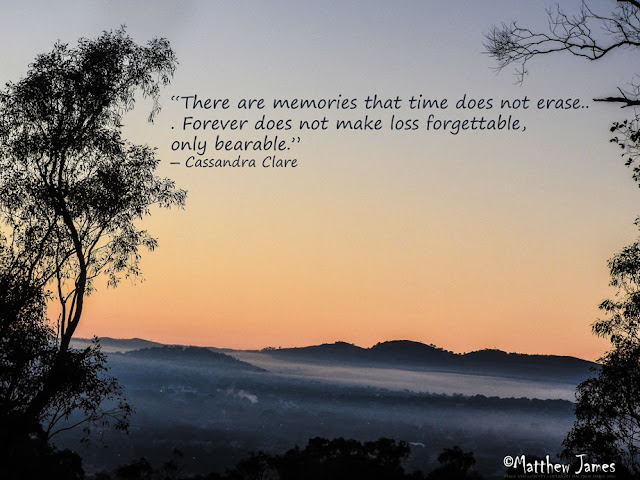 """There are memories that time do not erase. Forever does not make loss forgettable, only bearable"" - Cassandra Clare"