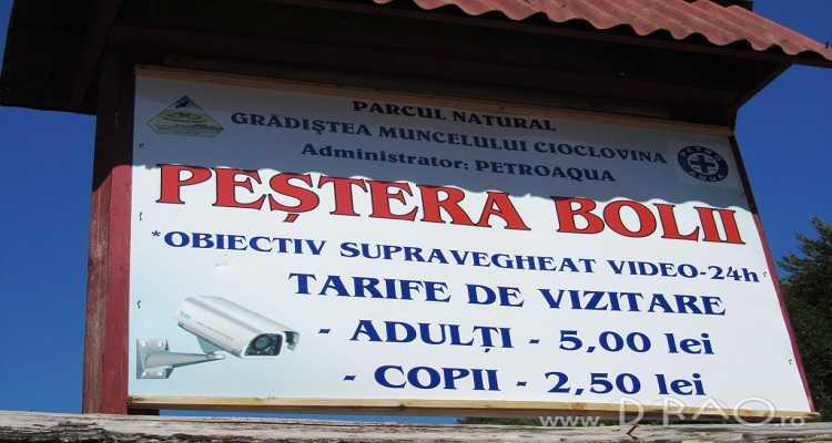 Taxe de intrare in Peștera Bolii.
