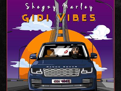 DOWNLOAD MP3: Shegzy Marley - Gidi vibes
